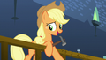 "AJ ""that's what fur's always for, Pinkie Pie"" S5E11.png"