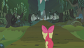Apple Bloom enters the Everfree Forest S1E09.png