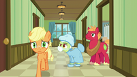 Applejack galloping to the hospital waiting room S6E23