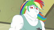 Bulk Biceps with a flowing rainbow wig EGDS12b