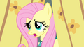 "Fluttershy ""I'll get there someday"" S4E14.png"