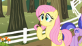 "Fluttershy ""Uh... Pinkie Pie...?"" S2E15.png"