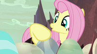 Fluttershy coddling the dragon eggs S9E9