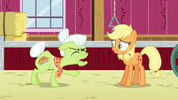 Granny Smith shouting frustrated at Applejack S6E23