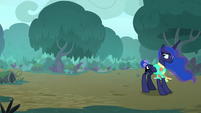 Luna looking back as Celestia leaves S9E13