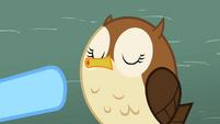 Owl hooting S2E07