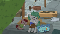 Professor Fossil and foals closing their eyes S7E25