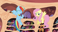 Rainbow Dash and Fluttershy -just like old times- S4E01