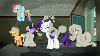 Rarity shakes the dust off of her S6E9