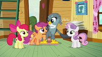 "Scootaloo ""I had a feeling we could help you"" S6E19"