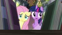 Twilight and Fluttershy look at Meadowbrook's books S7E20