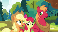 Applejack -anythin' else you can tell us- S7E13