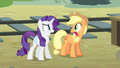 Applejack and Rarity 'We did' S4E11.png