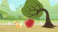 Applejack reveals a big apple S4E07