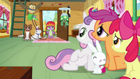 CMC and Angel sees Spike S