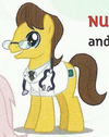 Doctor Horse Earth pony ID EoH