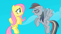 Fluttershy and Rainbow Dash S02E02.png