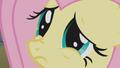 Fluttershy doe-eyed S1E07.png