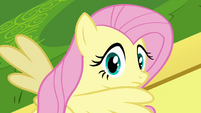 Fluttershy looking behind S2E22