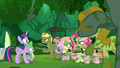 Fluttershy points her spear closer to Twilight S5E26.png