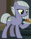 Limestone Pie ID 2