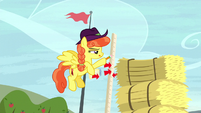 Pegasus judge measuring the hay bale stack S5E6