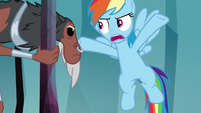 "Rainbow ""we're out of magic keys"" S8E25"