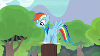 Rainbow Dash drives stake into the ground S7E5