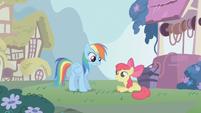 Rainbow Dash falando com Apple Bloom T1E12