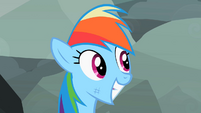 Rainbow Dash smiling 3 S2E07