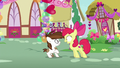 Apple Bloom asks Pip if he's Sweetie's secret admirer S8E10.png