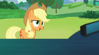 "Applejack ""I said your new name"" S5E24"