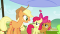 Applejack 'Much more' S3E08.png