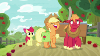 Applejack gives Big Mac the schedule S9E10
