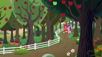 Big Mac and Sugar Belle walk on the farm S9E23