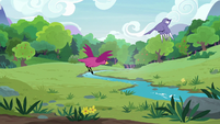Birds flying across the grassy meadow S7E5