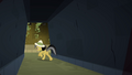 Daring Do heading down corridor S4E04.png