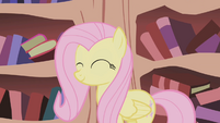 Fluttershy after cleaning Twilight's home S1E03