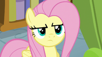 Fluttershy disapproves of her brother's actions S6E11