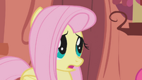 Fluttershy gasps after hearing -100 years- S1E07