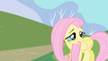 Fluttershy squeaks her name S1E01.png