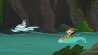 Quibble Pants water-skiing with Rainbow Dash (episode version) S6E13