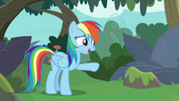 "Rainbow ""only if you want to build a bridge"" S8E9"