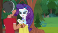 Rarity assigned to Emerald Tent EG4.png