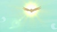 Roc's silhouette in front of the sun S8E11