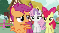"Scootaloo ""for the first time ever"" S6E19"