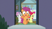 "Scootaloo ""they're coming home today!"" S9E12"