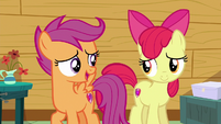 "Scootaloo ""trying to figure out your destiny"" S6E19"
