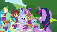 Twilight -it's time for something Rarity likes- S8E17