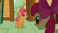 Apple Bloom 'and you seem like the perfect candidate' S3E04.png